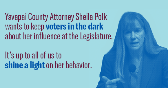 sheila polk wants to keep voters in the dark